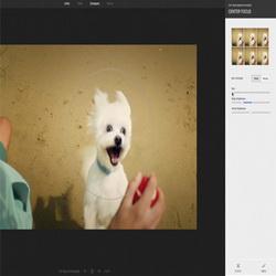Фоторедактор в социальной сети Google+